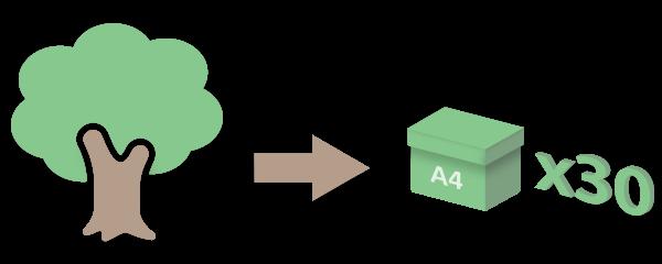 carta app ambiente